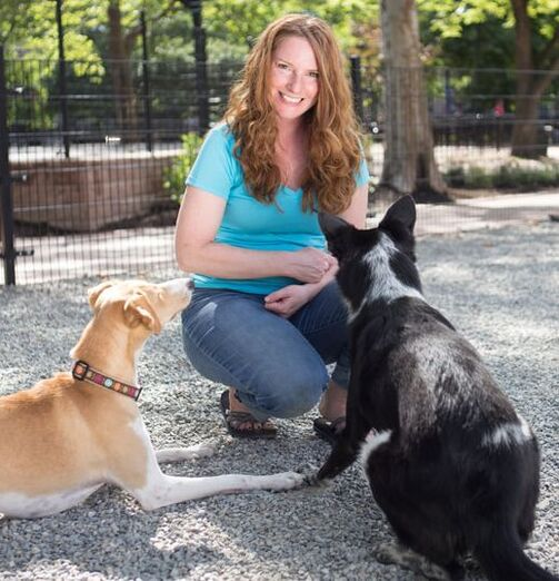 Jenna The Dog Trainer with her two dogs Emmy and Ryder.